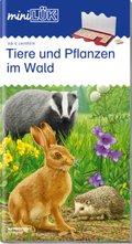 miniLÜK: Tiere und Pflanzen: im Wald