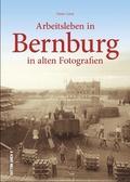 Arbeitsleben in Bernburg in alten Fotografien