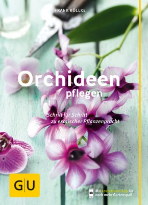 Orchideen pflegen