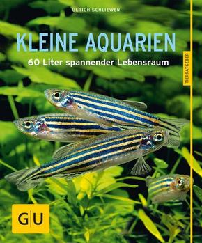 Kleine Aquarien