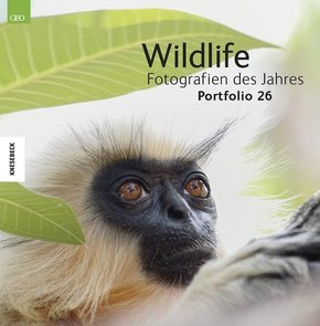 Wildlife Fotografien des Jahres; 2016; Portfolio.26
