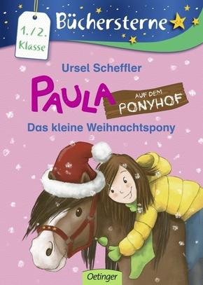 Paula auf dem Ponyhof - Das kleine Weihnachtspony