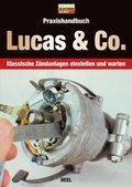 Praxishandbuch Lucas & Co.