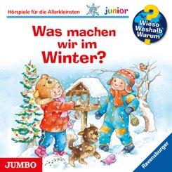 Was machen wir im Winter?, Audio-CD - Wieso? Weshalb? Warum?, Junior Tl.58