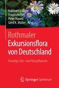 Exkursionsflora von Deutschland: Krautige Zier- und Nutzpflanzen; Bd.5