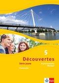 Découvertes - Série jaune: 99 grammatische Übungen; Bd.5