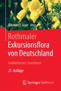 Exkursionsflora von Deutschland: Gefäßpflanzen, Grundband; Bd.2