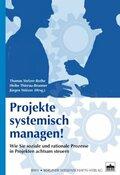 Projekte systemisch managen!