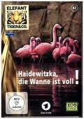 Elefant, Tiger & Co. - Haidewitzka, die Wanne ist voll!, 1 DVD