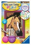 Malen nach Zahlen - Jeder kann malen (Mal-Sets), Bildgröße: 8,5 x 12 cm: Pferd im Stall