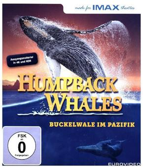 Humpback Whales 4K, 1 UHD-Blu-ray