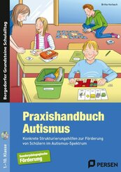 Praxishandbuch Autismus, m. CD-ROM