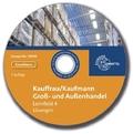 Kauffrau/Kaufmann im Groß- und Außenhandel: Lernfeld 4: Geschäftsprozesse als Werteströme erfassen, dokumentieren und auswerten, Lösungen, CD-ROM