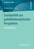 Sozialpolitik aus politikfeldanalytischer Perspektive