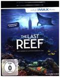 The Last Reef 4K, 1 UHD-Blu-ray