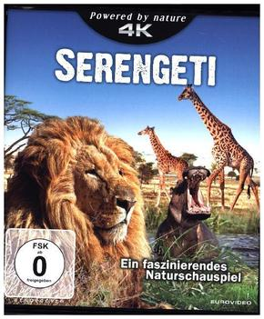 Serengeti 4K, 1 UHD-Blu-ray