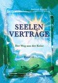 Seelenverträge - Bd.11