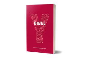 Bibelausgaben: Y-Bibel, Jugendbibel der Katholischen Kirche, Auswahlbibel; Katholisches Bibelwerk
