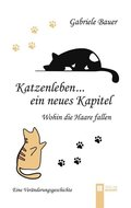 Katzenleben...ein neues Kapitel