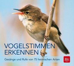 Vogelstimmen erkennen, Audio-CD