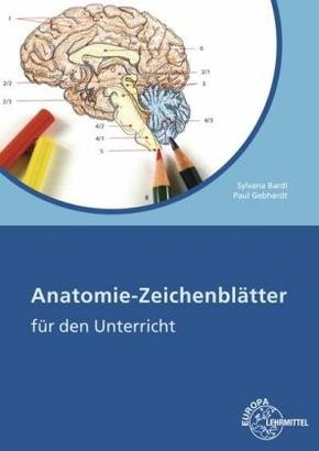 Anatomie-Zeichenblätter für den Unterricht