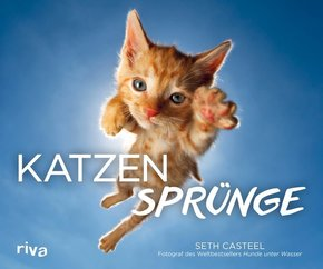 Katzensprünge