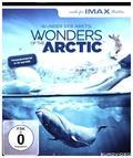Wonders of the Arctic 4K, 1 UHD-Blu-ray