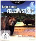 Adventure Yellowstone 4K, 1 UHD-Blu-ray