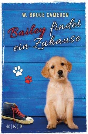 Bailey - Bailey findet ein Zuhause