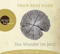 Das Wunder im Jetzt, 2 Audio-CDs