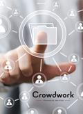 Crowdwork (f. Österreich)