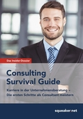 Consulting Survival Guide