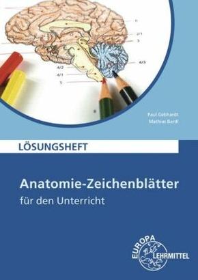 Anatomie-Zeichenblätter für den Unterricht, Lösungsheft