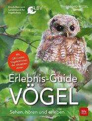Erlebnis-Guide Vögel
