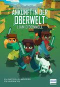 Minecraft - Ankunft in der Oberwelt