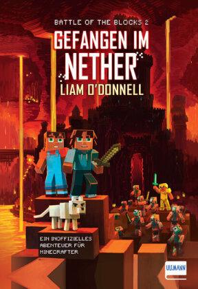 Minecraft - Gefangen im Nether