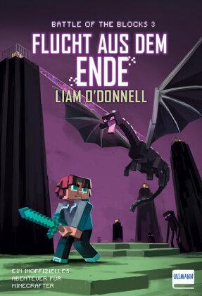 Minecraft - Flucht aus dem Ende