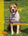 Mein gesunder American Staffordshire Terrier