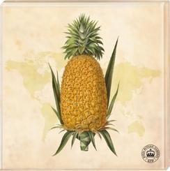 Kew Gardens - Untersetzer Motiv Ananas, 2er Set