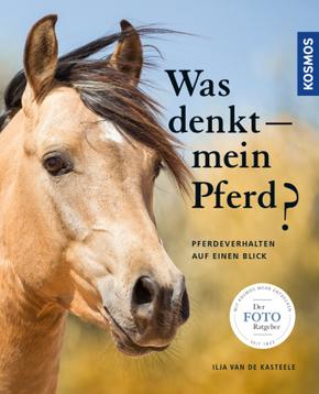 Was denkt mein Pferd?