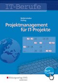 Projektmanagement für IT-Projekte