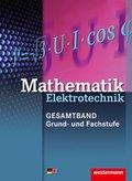 Mathematik Elektrotechnik, Gesamtband