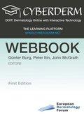 DOIT: Dermatology Online with Interactive Technology