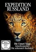 Die Ussuri Taiga - Amurleoparden, 1 DVD