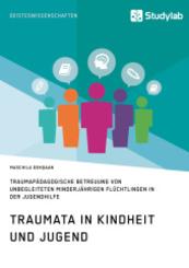 Traumata in Kindheit und Jugend. Traumapädagogische Betreuung von unbegleiteten minderjährigen Flüchtlingen in der Jugen