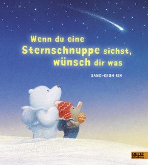 Wenn du eine Sternschnuppe siehst, wünsch dir was