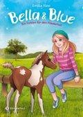 Bella & Blue - Ein Fohlen für den Fliederhof