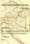 Die Habsburgermonarchie 1848-1918: Die Habsburgermonarchie und der Erste Weltkrieg, 2Teilbände; .11
