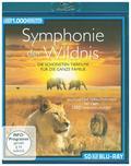 Symphonie der Wildnis, 1 Blu-ray