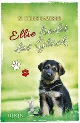 Ellie findet das Glück